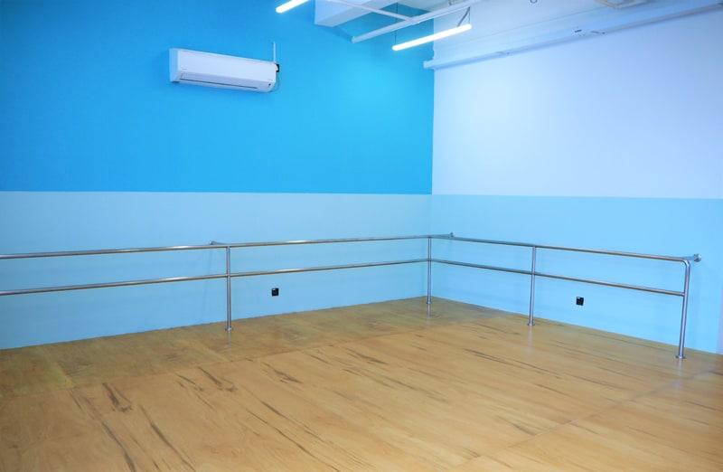 Danice Studio